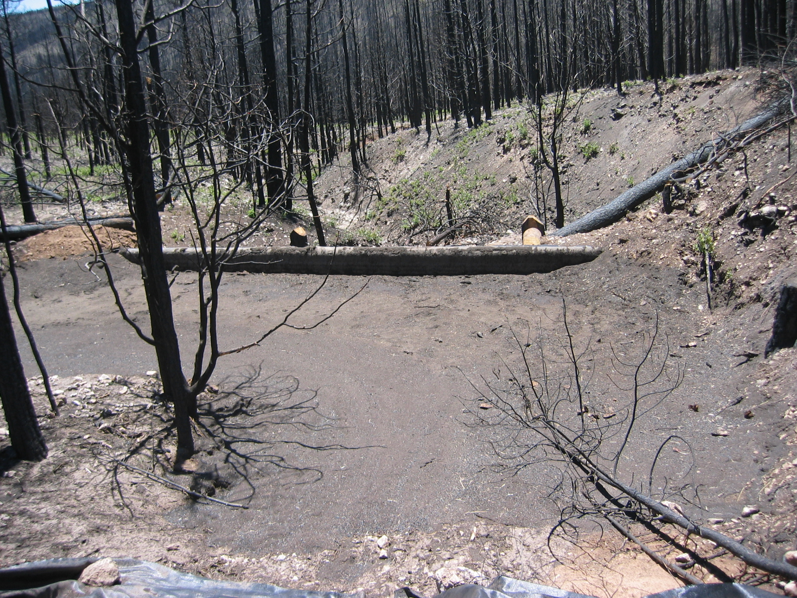 debris basin post fire