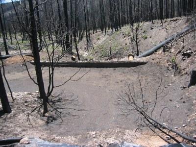 debris basin 1