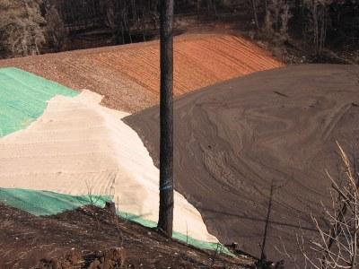 debris basin 3