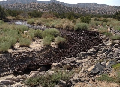 Debris Flow in Peralta Canyon in 2012