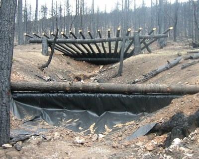 debris rack