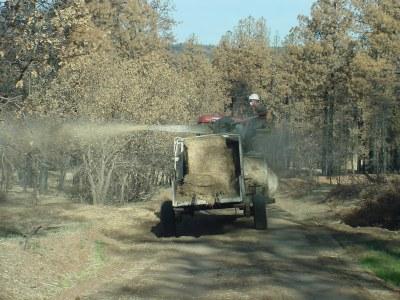 dry mulch 1