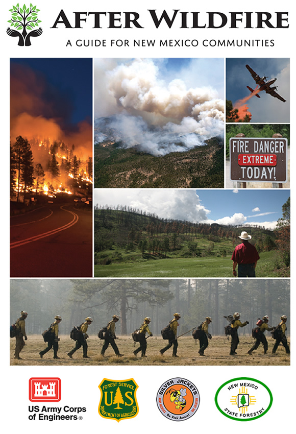 After Wildfire Guide Cover