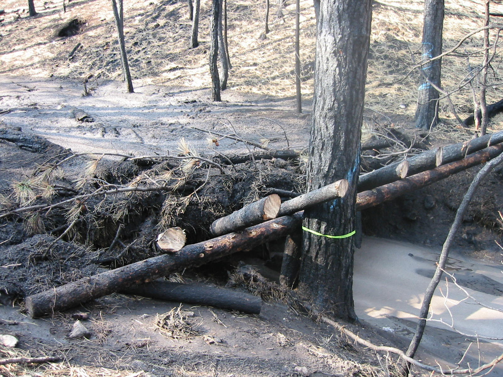 debris rack post fire