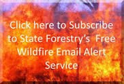 NM State Forestry Wildfire Alerts Button