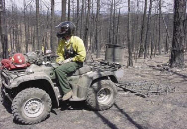 soil scarification post fire